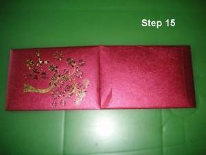 step15
